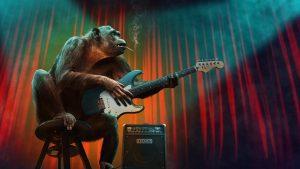 ギターを弾くサル