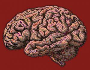 気持ちいいことをやめられない脳みそ